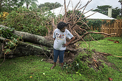 October 7, 2016 - Florida, U.S. - Betty Williams surveys the avocado tree that fell on her house on N. Riverside Drive in Tequesta. ''It was raining so hard around midnight when I heard a noise and lo and behold the tree fell'' said Williams.  She planted the tree 30 years ago when it was a seed. (Credit Image: © Melanie Bell/The Palm Beach Post via ZUMA Wire)