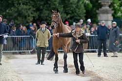 Bullimore Sarah, (GBR), Reve Du Rouet<br /> First Horse Inspection - Mitsubishi Motors Badminton Horse Trials <br /> Badminton 2015