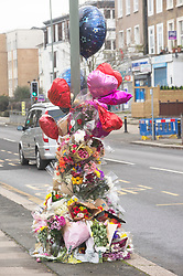 © Licensed to London News Pictures. 23/01/2019. Anerley, UK. A large memorial of flowers and balloons marks the spot on Croydon Road,Anerley near Penge at which a mother and her eight month old son was killed in a traffic collision. Luciano Newman passed away on Sunday and his mother Nicole Newman aged twenty three died at the scene on January the thirteenth. Photo credit: Grant Falvey/LNP