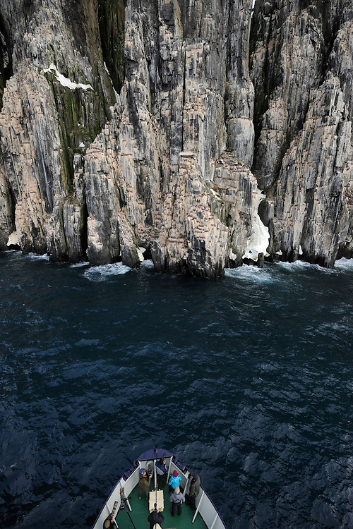 People on a boat in front of a bird cliff with Thick-billed Murre or Brünnich's Guillemot, Uria lomvia, Svalbard, Norway