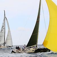 Wild Sailing Regatta 10/6/18