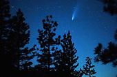 News-Comet California-Jul 22, 2020