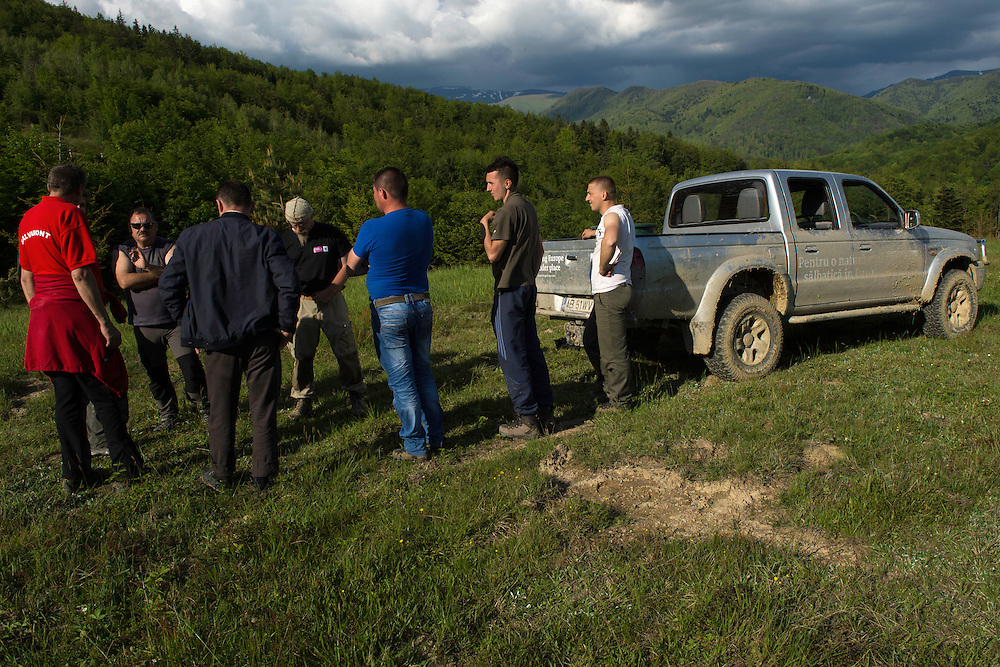 Rewilding staff discussion at the release of European bison, Bison bonasus, in the Tarcu mountains nature reserve, Natura 2000 area, Southern Carpathians, Romania. The release was actioned by Rewilding Europe and WWF Romania in May 2014.