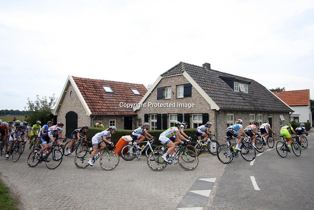 Boels Rental Ladiestour 2013 Zaltbommel-Veen Sfeeriilustratie