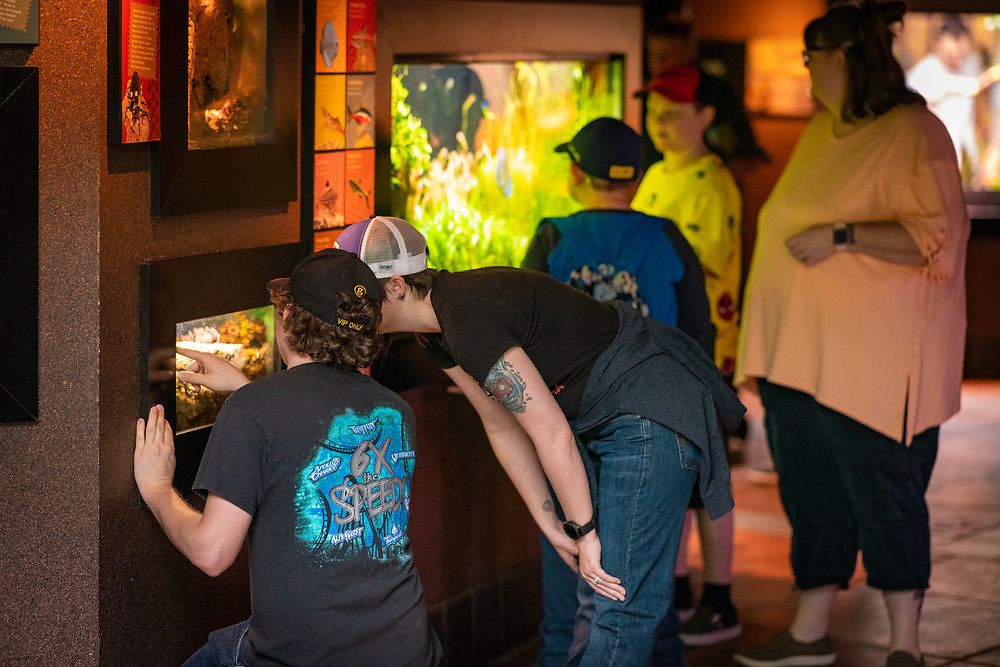 Tropical Discovery provides an intimate viewing experience.