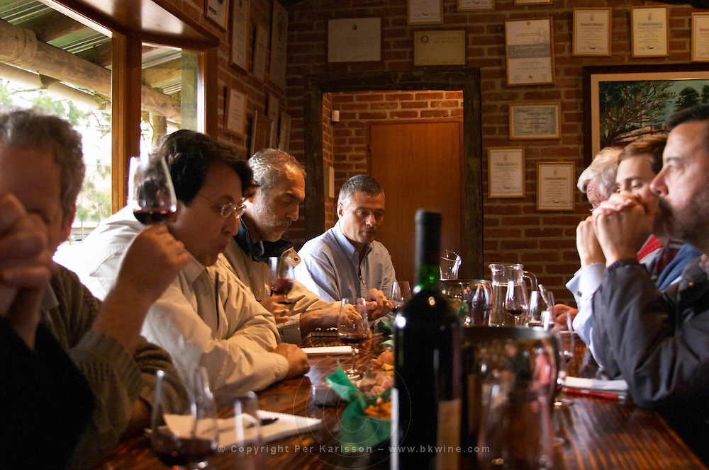 Wine tasters in the tasting room. Bodega Vinos Finos H Stagnari Winery, La Puebla, La Paz, Canelones, Montevideo, Uruguay, South America