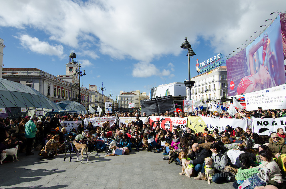 Madrid, Spain. 7th Feb, 2016. Thousands of demonstrators at Puerta del Sol square in Madrid protesting against hunting using dogs.
