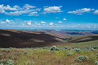 Coulees, hills, ridges and thousands of small creeks are very typical of the vast wild land between Ellensburg, Washington and the mighty Columbia River to the East. This view is facing east from the base of Whiskey Dick Mountain.