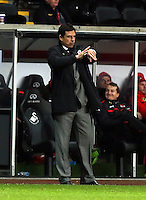 Pictured: manager for Wales Chris Coleman. Wednesday 06 February 2013..Re: Vauxhall International Friendly, Wales v Austria at the Liberty Stadium, Swansea, south Wales.