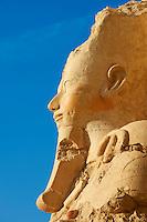 Egypte, Haute Egypte, vallée du Nil, environs de Louxor, nécropole thébaine classée Patrimoine Mondial de l'UNESCO, Thèbes Ouest, Deir El Bahari, temple d'Hatchepsout // Egypt, Nile Valley, Luxor, Thebes, West bank of the River Nile, Temple of Hatshepsut, Deir el Bahar