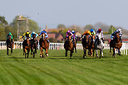 Ghayadh ridden by Nicola Currie and trained by Staurt Williams, Waarif ridden by Conor McGovern and trained by David O'Meara, War Glory ridden by Seamus Cronin and trained by Richard Hannon, Zwayyan ridden by Joshua Bryan and trained by Andrew Balding, Tricorn ridden by James Sullivan and trained by Ruth Carr, Petrus ridden by Martin Dwyer and trained by Brian MeehanSalute the Soldier ridden by Adam Kirby and trained by Clive Cox, Wahash ridden by Sean Levey and trained by Richard Hannon, Mr Top Hat ridden by Harry Bentley and trained by David Evans  - Ryan Hiscott/JMP - 19/04/2019 - PR - Bath Racecourse- Bath, England - Race 4 - Good Friday Race Meeting at Bath Racecourse