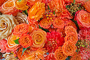 2013 08 23 DeJuan Stroud Studio - flower images
