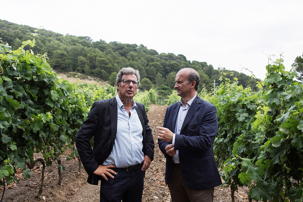 """GORGONA, ITALY - 27 JUNE 2014: (L-R) Penitentiary Director Carlo Alberto Mazzerbo and President of Marchesi de' Frescobaldi Lamberto Frescobaldi chat in the one-hectare vineyard cultivated by inmates, in Gorgona, Italy, on June 27th 2014.<br /> <br /> Gorgona is the smallest island of the Tuscan archipelago, located 18 miles west of Livorno, which became an experimental agricultural penal colony in 1869.<br /> <br /> The """"Frescobaldi per Gorgona"""" project  provides inmates the opportunity to learn winemaking techniques and job skills under the supervision of the company's agronomists and winemakers, led by Vice President Lamberto Frescobaldi himself. Fifty inmates contributed to the production of Gorgona, a white wine made from Vermentino and Ansonica grapes planted on the island of Gorgona in the Tyrrhenian Sea, close to the Tuscan coast. The Frescobaldi family purchased a hectare of old vineyards and will expand with more vineyards in the upcoming months. Total production is only 2,700 bottles, but 1,000 of the bottles will reach the US market through Frescobaldi importer Folio Fine Wine Partners, in the Fall.<br /> <br /> Born in August 2012, the Gorgona initiative was financed by the Department of Penitentiary Administration and accomplished through the collaboration of the Gorgona Penitentiary's Directorate and Marchesi de' Frescobaldi."""