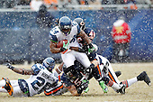 2010 Seahawks at Bears NFC Divisional