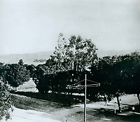 1901 Looking NW at Prospect Ave. (Hollywood Blvd.) & Cahuenga Blvd.?