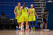 Aerial Powers of the Dallas Wings gets high fives from teammates after being fouled by the Connecticut Sun during a WNBA preseason game in Arlington, Texas on May 8, 2016.  (Cooper Neill for The New York Times)