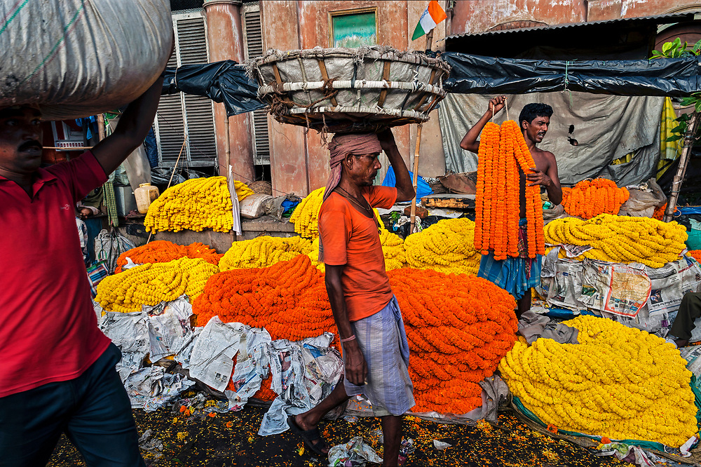 Vendors vie for business at Calcutta's vast Malik Ghat flower market, where garlands made of yellow and orange marigolds are sold as decorations for weddings, festivals, and religious events. The centuries-old market is eastern India's largest flower bazaar with as many as 2,000 flower growers hawking their wares along the east bank of the Hooghly River.  © Steve Raymer / National Geographic Creative