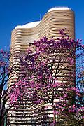 Belo Horizonte_MG, Brasil...Edificio Niemeyer na Praca da Liberdade em Belo Horizonte, ele foi projetado pelo arquiteto Oscar Niemeyer em Belo Horizonte, Minas Gerais...The Niemeyer building in Liberdade square, it was designed by architect Oscar Niemeyer in Belo Horizonte, Minas Gerais...Foto: JOAO MARCOS ROSA / NITRO