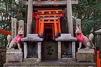 Japon, île de Honshu, région de Kansaï, Kyoto, Arashiyama, temple de Fushimi Inari-taisha, sanctuaire Shinto // Japan, Honshu island, Kansai region, Kyoto, Arashiyama, Fushimi Inari-taisha Temple, Shinto sanctuary