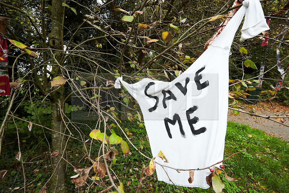 © Licensed to London News Pictures. 23/10/2019. GREAT MISSENDEN, UK.  Enabling works to allow the construction of the HS2 railway continue despite the future of the project being reviewed. A number of mature trees were due to be felled last week to allow easier access for construction traffic but local residents and climate activists created a makeshift camp to prevent their destruction. In this picture: T-shirt with Save Me painted on the front hanging of one of the threatened trees. Photo credit: Cliff Hide/LNP