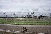 Hipódromo Argentino de Palermo <br /> Buenos Aires