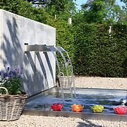 Modern Garden 847