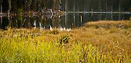 Chain of Lakes in autumn Gifford Pinchot National Forest, Cascade Mountain Range, Washington, USA