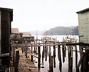 """CH0006. """"Florence, Oregon. Upstream. August 1961"""" Branch of Point Adams Packing Co. on the Siuslaw River Ektachrome"""