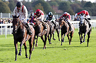 HAMISH (1) ridden by Daniel Tudhope and trained by William Haggas winning The Racebets Handicap Stakes over 1m 6f (£100,000)  during the October Finale Meeting at York Racecourse, York, United Kingdom on 11 October 2019.