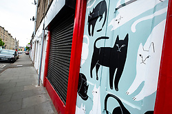 Street art project Openclose Dundee using art on doors in out of the way alleyways and lanes by local artists in the city. Dundee,Scotland, UK. Room 39 by Jen Collins