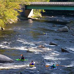 Whitewater kayaking just below Zoar Rapid on the Deerfield River in Charlemont, Massachusetts.