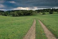 rural dirt road through green grass field pasture ranch in spring below dark grey storm clouds, Santa Clara County, California