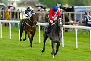 Forced ridden by Shane Kelly and trained by Richard Hughes in the CB Protection Novice Median Auction Stakes.  - Ryan Hiscott/JMP - 06/05/2019 - PR - Bath Racecourse- Bath, England - Kids Takeover Day - Monday 6th April 2019