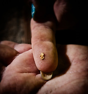 A gold flake displayed by a worker.