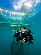 KISS Sidewinder rebreather diver under the platform in Dutch Springs, Pennsylvania.