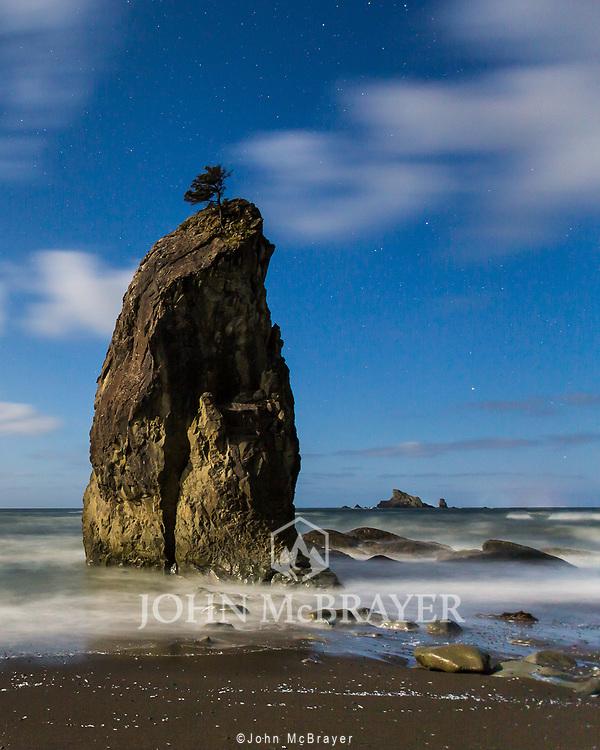 Under the light from a full moon, a single tree caps one of the large rocks along Rialto Beach. © John McBrayer