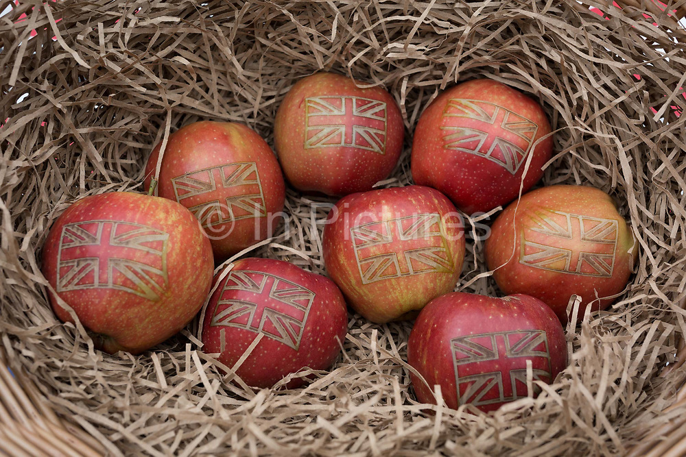 On Brexit Day, the date that the UK leaves the European Union, Red Princes apples are seen in detail in a basket, displayed by British Apples & Pears, an organisation representing British fruit growers, in Westminster, on 31st January 2020, in London, England.