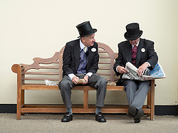 © Licensed to London News Pictures. 17/06/2014. Ascot, UK. Men sit on a bench.  Day one at Royal Ascot 17th June 2014. Royal Ascot has established itself as a national institution and the centrepiece of the British social calendar as well as being a stage for the best racehorses in the world. Photo credit : Stephen Simpson/LNP