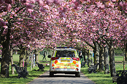 © Licensed to London News Pictures. 09/04/2020. London, UK. A police vehicle drives along a row of blossoming cherry trees in Greenwich Park. The government has asked that people continue to remain indoors over the Easter Weekend. Photo credit: Rob Pinney/LNP