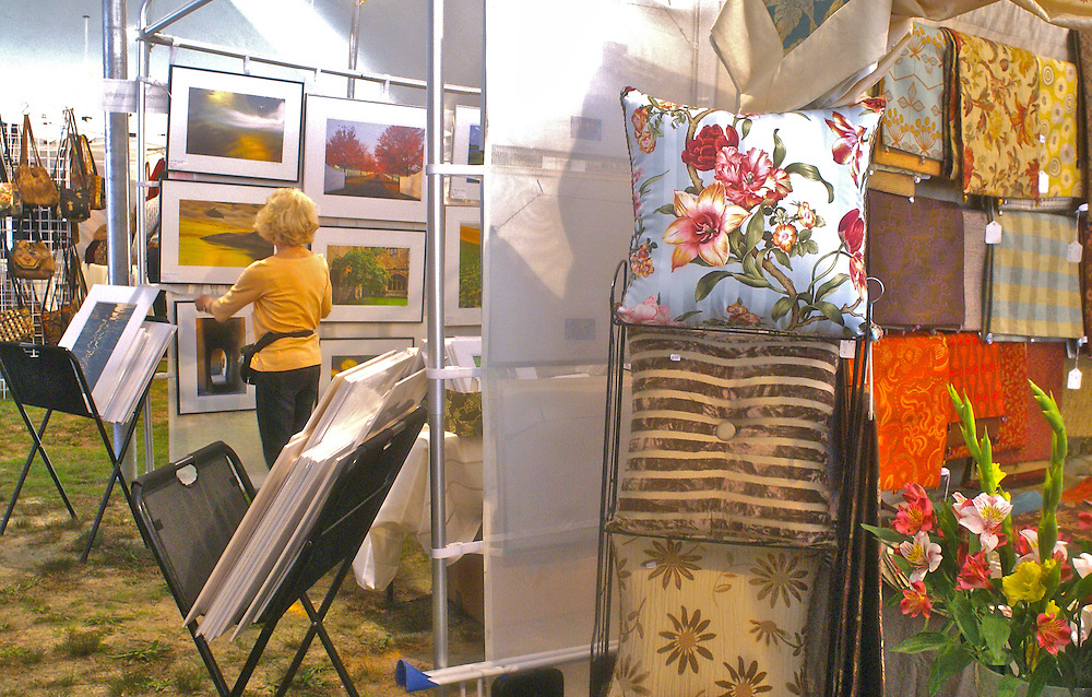 A Variety of Art, Annual Art Festival at Wheaton Arts, Millville, New Jersey