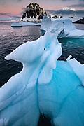 Iceberg, Port Charcot, Booth Island