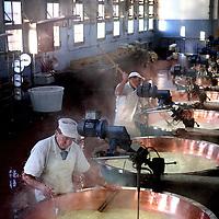 Italie,Parma ,Baganzolino,27 december 2006..Kaasfabriek Parma C.P.L. Baganzolino..Proces van Parmazaanse kaas maken..stremsel wordt toegevoegd en wrongel wordt gevormd, de z.g. cricotta...Foto:Jean-Pierre Jans