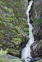 Canyon Creek flows through Box Canyon Falls Park in Ouray, Colorado.