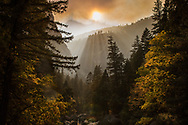 Due to the Yosemite fires, the smoke rests low in front of the sun creating a unique orange glow and beautiful light rays through the trees. The fire was started from a lightning strike in mid August. With no chance of damaging structures, the fire will most likely burn until first snow fall. Controlled burns like this, that are monitored by the Park Rangers, are good for the environment creating new growth in the spring and preventing parasites like the pine beetle from taking over.