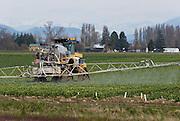A farm machine sprays a crop of tulips in the Skagit River Delta, beneath the snowcapped North Cascade Mountains in Washington, USA