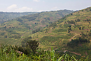 The farmland and terraces in Southwest region of Uganda.