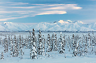 Sunset light on the Chugach Mountains at Tahneta Pass in Southcentral Alaska. Winter.