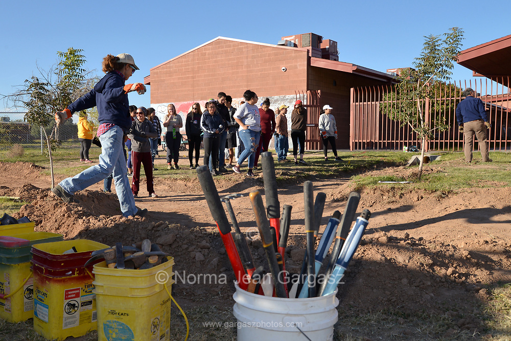 Tucson, Arizona, USA; November 17, 2018; Students, nonprofit and grassroots organizations construct green infrastucture that will capture storm water to water trees they are planting to improve the landscape at STAR Academic High School, Sunnyside School District on Tucson's south side.  PHOTO CREDIT: Norma Jean Gargasz