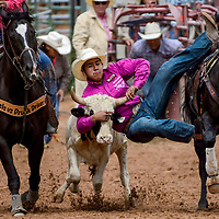 Steer wrestler Rooster Yazzie slide from his saddle to bring down his steer during the Gallup Intertribal Indian Ceremonial rodeo at Red Rock Park in Gallup Saturday.