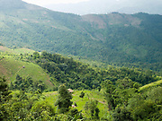 Upland landscape with rice fields, tea plantations and forests in Ban Phou Soum, Phongsaly province, Lao PDR.